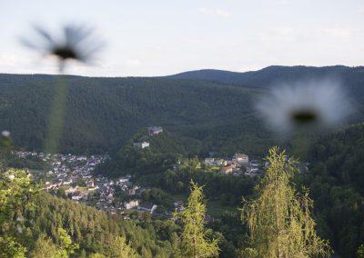 Blick vom Trippstein auf Schwarzburg und das Schloss in Schwarzburg