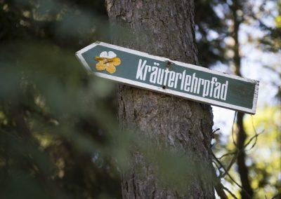 Wegweiser zum Kräuterlehrpfad am Fröbelturm bei Oberweissbach.