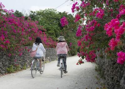 Reise Okinawa und Yaeyama-Inseln