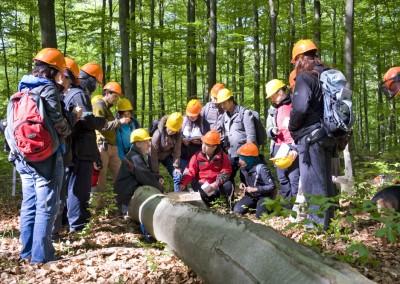 Masterstudenten der Forstwirtschaft auf einer Exkursion in den Göttinger Wald