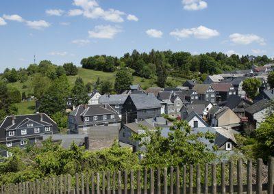 Blick auf Meuselbach im oberen Schwarzatal.